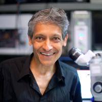 Aniruddha Das, PhD