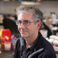 Wesley Grueber, PhD in the lab