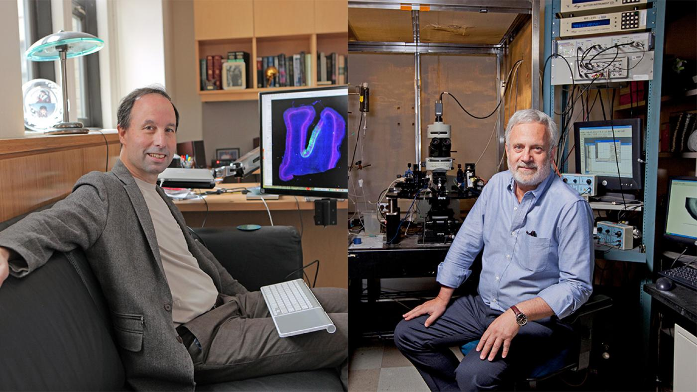 Michael Shadlen, MD, PhD and Steven Siegelbaum, PhD named as Fellows of the American Association for the Advancement of Science