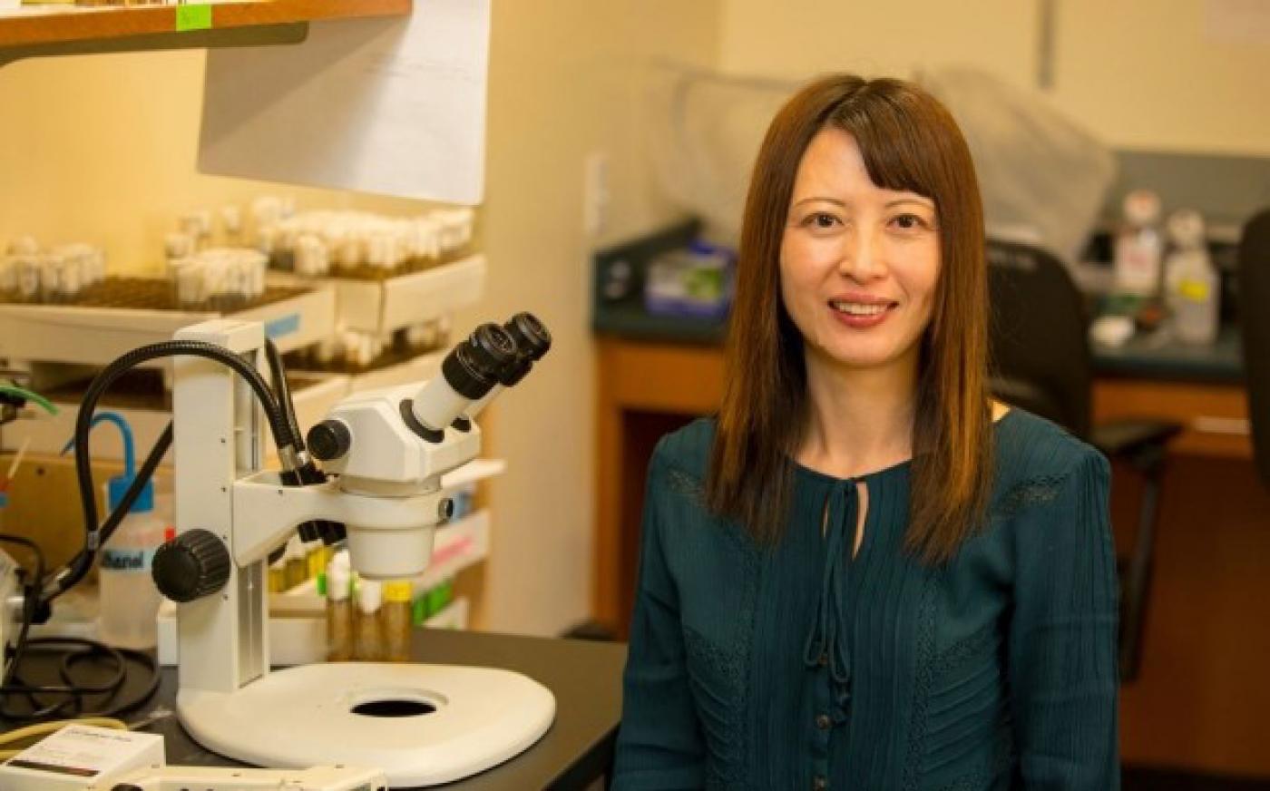 Mitochondrial Homeostasis in Parkinson's Disease | Columbia